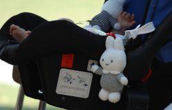 Beeld maxicosi met knuffel en voet van baby (tuinfeest IMG_3977)
